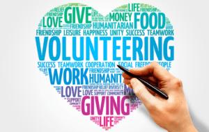 newbie volunteering 750 x 475