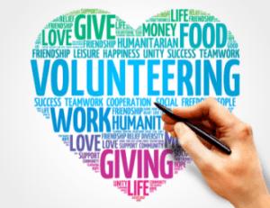 newbie volunteering 360 x 277
