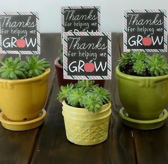 helping me grow