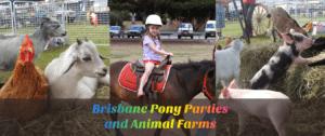 pony hire brisbane