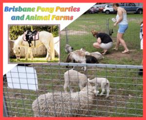 Brisbane Pony Parties